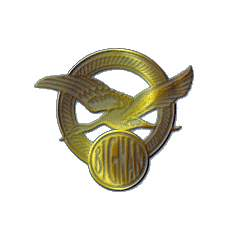 лого Bignan